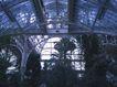 艺术建筑0033,艺术建筑,建筑,空间 植物 拱形