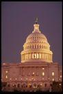 风景名胜0144,风景名胜,建筑,白宫