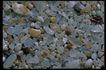 五彩石0426,五彩石,装饰,