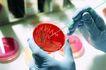 白衣使者0096,白衣使者,医学医药,戴着手套 红色药物 圆形