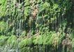 山溪瀑布0050,山溪瀑布,旅游风光,