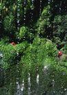 山溪瀑布0087,山溪瀑布,旅游风光,
