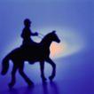 比赛运动0178,比赛运动,旅游风光,马匹