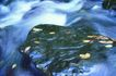 海底观赏0023,海底观赏,旅游风光,群鱼