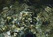 清澈山水0066,清澈山水,旅游风光,