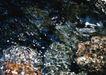 清澈山水0071,清澈山水,旅游风光,