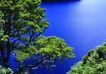 渡假圣地0013,渡假圣地,旅游风光,平静湖面 春的绿树