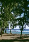 渡假圣地0036,渡假圣地,旅游风光,晴天 海边 绿树