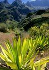 渡假圣地0039,渡假圣地,旅游风光,叶子 好天气 大山