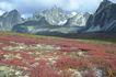 登山运动0128,登山运动,旅游风光,