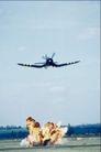 机翼特写0237,机翼特写,交通,
