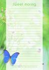 信纸包装0072,信纸包装,生活,蓝色蝴蝶