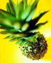 夏日标记0021,夏日标记,生活,一个菠萝