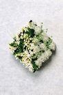情人礼品0058,情人礼品,生活,白色系的花