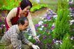 老人生活0019,老人生活,生活,园林 栽花