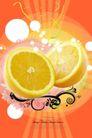 水果0003,水果,行业设计精选,橙子 鲜橙 黄色水果