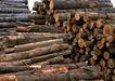 工业环保0195,工业环保,科技,