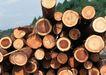 工业环保0196,工业环保,科技,