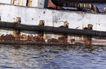 港口运输0018,港口运输,科技,船的旁边 水面
