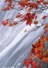 瀑布水源0220,瀑布水源,自然风景,