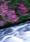 瀑布水源0253,瀑布水源,自然风景,