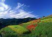 田园风景0221,田园风景,自然风景,