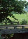 田园风景0245,田园风景,自然风景,