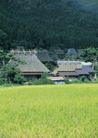 田园风景0275,田园风景,自然风景,