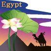 花之妖娆0113,花之妖娆,自然风景,Egypt 骆驼 叶片