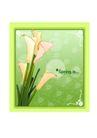 花之妖娆0141,花之妖娆,自然风景,花的插画
