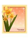 花之妖娆0144,花之妖娆,自然风景,温馨的花