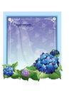 花之妖娆0150,花之妖娆,自然风景,紫色花朵