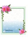 花之妖娆0155,花之妖娆,自然风景,春花