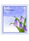 花之妖娆0157,花之妖娆,自然风景,紫色调