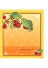 花之妖娆0165,花之妖娆,自然风景,开放的花儿
