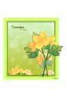 花之妖娆0166,花之妖娆,自然风景,彩色花朵