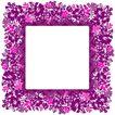 花卉边框0006,花卉边框,自然风景,