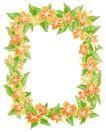 花卉边框0009,花卉边框,自然风景,