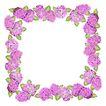 花卉边框0012,花卉边框,自然风景,
