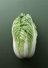 蔬菜瓜果0244,蔬菜瓜果,自然风景,