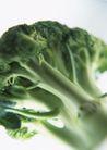 蔬菜瓜果0252,蔬菜瓜果,自然风景,