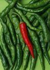 蔬菜瓜果0261,蔬菜瓜果,自然风景,