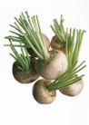 蔬菜瓜果0275,蔬菜瓜果,自然风景,