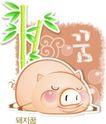 猪0013,猪,中华图片,