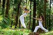 森林力量0014,森林力量,综合,