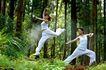 森林力量0016,森林力量,综合,