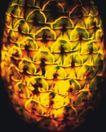 神奇的水果0083,神奇的水果,综合,