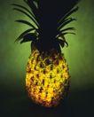 神奇的水果0084,神奇的水果,综合,