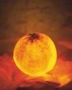神奇的水果0097,神奇的水果,综合,