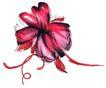 花纹0525,花纹,综合,